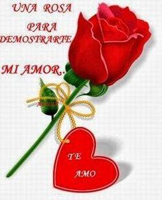 ver imagenes de rosas con frases de amor bonitas