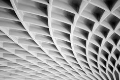 Roof detail of the Palazzetto Dello Sport by  Pier Luigi Nervi. Vaulted structural concrete. Structural engineering meets art.
