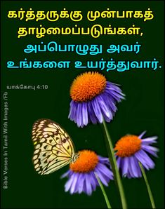 Bible Images, Tamil Bible, Humble Yourself, James 4, King Jesus, King Of Kings, Bible Verses, Butterfly, English