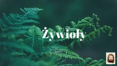 Discover more about żywioły ✌️ - Presentation Tsunami, Presentation, Neon Signs, Movie Posters, Movies, Geography, Speech Language Therapy, Films, Film Poster