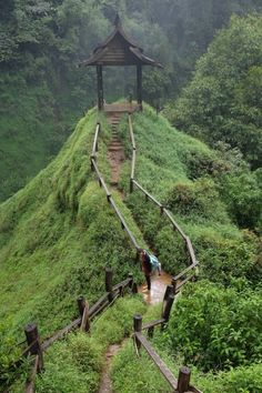 Going to Laos? You should visit the South and experience the unforgettable Bolaven Plateau Motorbike Loop. Dream Trips, Train Rides, Asia Travel, Southeast Asia, Laos, Morocco, South Africa, Waterfall, Places To Visit