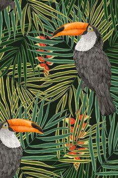 From the designer Alicia De Costa, a jungle leaf wallpaper design with big, bold, beautiful Toucan bird motifs.