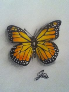 A drawing of a Monarch Butterfly I did for a tattoo.
