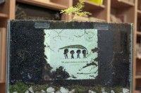 """El """"Libro-árbol"""", una curiosa iniciativa para crear conciencia ecológica"""