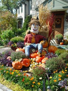 The centerpiece of my vignette-a straw scarecrow. He is not very scary-the crows are perched all over him. The clothes and boots were contributed from the lot of us; the face got painted on a pillowcase. His hat-some left over erosion mat from a hydroseeding job on a slope. He is one hundred percent straw stuffed-as he should be. The corn shocks add height, and set our fall figure down-he looks pleased to be settled in where he is. A hedge of gazanias knits everything together.