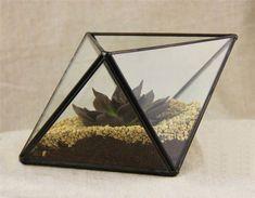 Small Geometric Polyhedron Terrarium Pod, Air Plant Glass Terrarium, Glass Plant Terrarium for Succulents and Plants(China (Mainland))