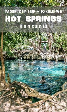 Kikuletwa hotsprings, Tanzania / Things to do in Moshi, Arusha / Hot springs / Chemka, Maji Moto Africa Destinations, Travel Destinations, Travel Tips, Travel Plan, Travel Hacks, Kenya, Cool Places To Visit, Places To Go, Estilo Hippy