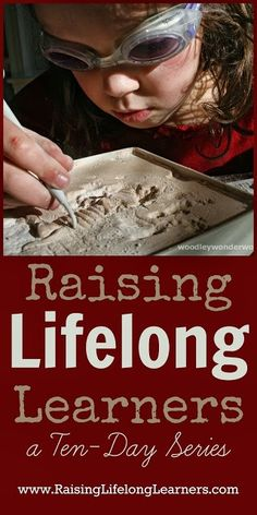 Raising Lifelong Learners - a Ten Day Series via www.RaisingLifelongLearners.com