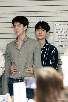 these lovers | sehun baekhyun exo