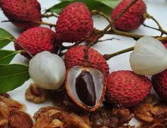 Plantar lichia é mais fácil do que imagina, experimente! É uma delícia de fruta! #horta #plantar #lichia #jardim