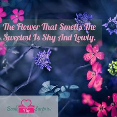 The #flower that smells the sweetest is shy and lowly #garden #love #nature #beautiful #bookthesurprise