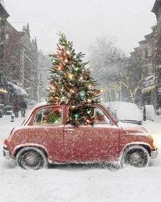macchina sulla neve con albero di natale