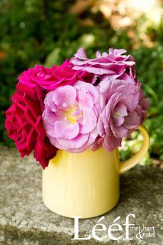 Blomme in n erde beker<br> Pretty Pictures, Flower Power, Decoupage, Diy Home Decor, Art Projects, Afrikaans, Rose, Tableware, Plants