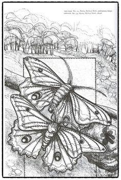 Die Kunst von Annemieke Mein: Wildlife Artist in Textiles Machine Embroidery Quilts, Quilting Thread, Embroidery Applique, Cross Stitch Embroidery, Thread Painting, Fabric Painting, Fabric Art, Wild Life, Textiles
