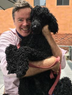 I am constantly overwhelmed by total Poodle devotion Mans Best Friend, Girls Best Friend, Best Friends, Chocolate Poodle, Best Mate, Standard Poodles, Puppy Love, Animals And Pets, Fur Babies