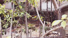 🌱🌿🍃 winter #summer #happy #kardashians #places #sanfrancisco #vacation #love #foodporn #photography #world #destination #london #mypics #morning #pictures #peace #paris #nature #yoga #newyork #food #inspirationalworld #stretch #italy #life#eventprofs #meetingprofs #eventplanner #eventtech