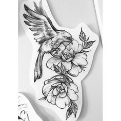 Watercolor bird b/w background