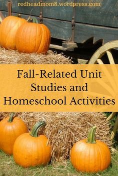 Fall-Related Unit Studies and Homeschool Activities #homeschool #ihsnet #fall #activities #unitstudies