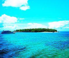 """""""Amazingly Beautiful Great Barrier Reef""""  人生で一度は行ってみたいと思ってたグレートバリアリーフに行くことが出来ました天候にも恵まれて空と海のコントラストが本当に美しかったです 今まで海は砂浜でごろごろするのが好きだったんだけどそれは綺麗な海で泳いだことがあまり無かったからかも知れません笑 透き通った海で数え切れない魚やカメ美しいサンゴ礁に囲まれて泳ぐのはとても気持ち良いものでした絶対また行く  #グレートバリアリーフ#オーストラリア#ケアンズ#海#サンゴ礁#魚#カメ#夏#一度は行ってみたいシリーズ#イエローナイフ#オーロラ#ボリビア#ウユニ塩湖#フランス#モンサンミッシェル #greatbarrierreef#australia#cairns#sea#summer#beatiful#place#niceview#thanksgod by 4ichi23 http://ift.tt/1UokkV2"""