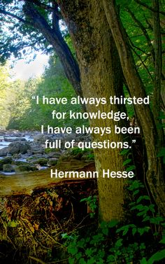 """I have always thirsted for knowledge, I have always been full of questions."" – Hermann Hesse, Siddhartha --  Image of Ken Lockwood Gorge, NJ, by Dr. Joseph T. McGinn --  Interested in learning? Explore the Pinterest board, ""Educational Learning Tips,"" the Education articles at http://www.examiner.com/education-in-national/florence-and-joseph-mcginn, and the learning quotations at http://www.examiner.com/article/fifty-quotations-inspire-education-and-learning"