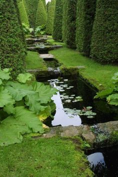 ...Frank and Anne Cabot's gardens at Les Quatre Vents in Quebec, here are some shots of water and reflections from other parts of the garden.