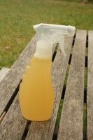 Homemade mosquito repellant (vanilla and lavender) - great for outdoor parties