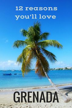 Dreamy white sand beaches, fresh authentic cuisine, affordable luxury, unspoiled beauty are just a few of the reasons you should travel to visit Grenada.