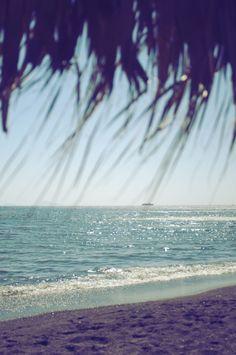 Summer shade