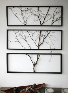 Real tree on the wall. Home decor.