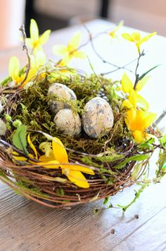 HOW TO FEATHER A STORE BOUGHT NEST - StoneGable