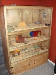 Image result for guinea pig cages