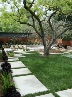 concrete pavers and lawn.  Don't think I'll ever have this beautiful grass, but.....
