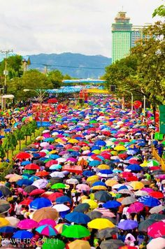 Parade of umbrellas during a solemn procession in Cebu, Philippines
