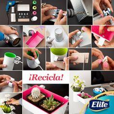 ¡Recicla y crea un área verde para tu escritorio con estos pasos que muestra la imagen!  Solo necesitas: -Latas -Pintura acrílica  -Un taladro -Canasta -Soportes, puede variar el diseño, compra el que vendan en tu ferretería más cercana.   #HazloTuMismo #DIY