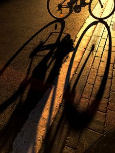 322/365 Sol La sombra de la ruedas de esta bicicleta a primera hora de la mañana forman un ocho y me recuerda que este miércoles 18 de noviembre es sumamente soleado. Si no fuera por las sombras alargadas y las hojas en los jardines nadie diría que estamos en otoño...parece verano!