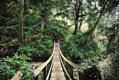 bridge to beach by mrs. french, via Flickr