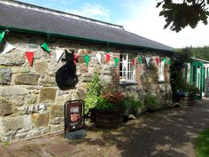 Black Cat Cafe, Parc Glynllifon, Gwynedd (North Wales).