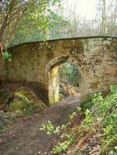 old victorian garden by humblegrub.deviantart.com on @deviantART
