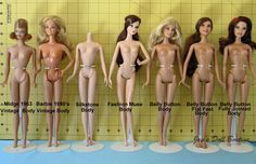 Information about Barbie Doll Sizes