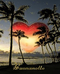 Gif Buonanotte, Good Night, Bonne nuit, Buenas noches, Gute Nacht in GIF… Heart Day, I Love Heart, Happy Heart, My Love, Heart Pictures, Beautiful Pictures, Scenery Pictures, Heart Images, Amazing Photos
