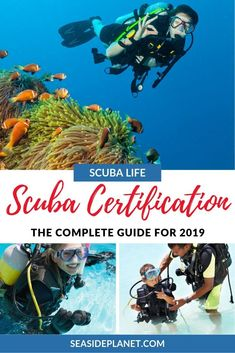 Springboard Pan Am Printing Videos Projects Posts Code: 9711720826 Scuba Diving Courses, Scuba Diving Equipment, Scuba Diving Gear, Cave Diving, Tailoring Training, Scuba Diving Certification, Diving School, Maui Vacation, Koh Tao