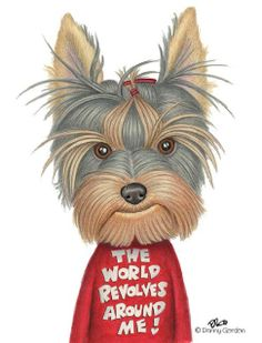 World revolves around me yorkie Yorkies, Yorkie Puppy, New Puppy, I Love Dogs, Cute Dogs, Toy Dog Breeds, Teacup Yorkie, Silky Terrier, Terrier Puppies