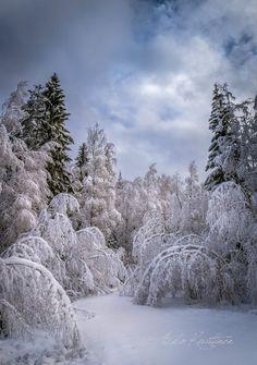 Taipujat (Finland) by Asko Kuittinen