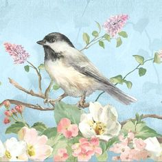 Little bird vintage Images Vintage, Vintage Art, Decoupage, Watercolor Bird, Watercolor Paintings, Bird Pictures, Art And Illustration, Bird Art, Art Reproductions