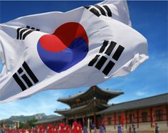 South Korean Flag | Palace