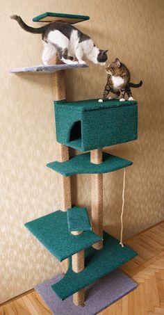 Дом для кота фото