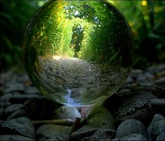 Faeries, Cob, Castles & Magic The world is full of magical creatures patiently waiting for our wits to grow sharper. Faery is my life, while cob and castles are my dreams. Magical Creatures, Glass Ball, Fantasy World, Crystal Ball, Faeries, Beautiful World, Simply Beautiful, Enchanted, Fairy Tales