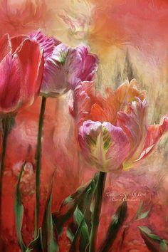 Tulips - Colors Of Love Print By Carol Cavalaris
