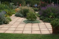 Large pavers by Gardening in a Minute, via Flickr