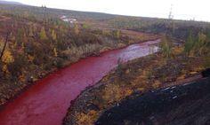 Filtraciones desde una mina de níquel convierten a este río ruso en rojo - http://www.renovablesverdes.com/filtraciones-desde-una-mina-de-niquel-convierten-a-este-rio-ruso-en-rojo/